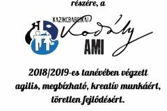 Igazgatói dicséret 2019 - társastánc